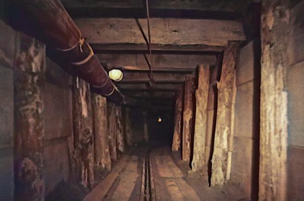 Bild 1 von 8: Abschnitt des 135 Meter langen Tunnels