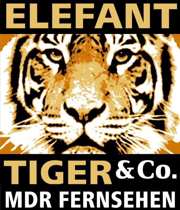 Bild 1 von 1: Elefant, Tiger und Co.